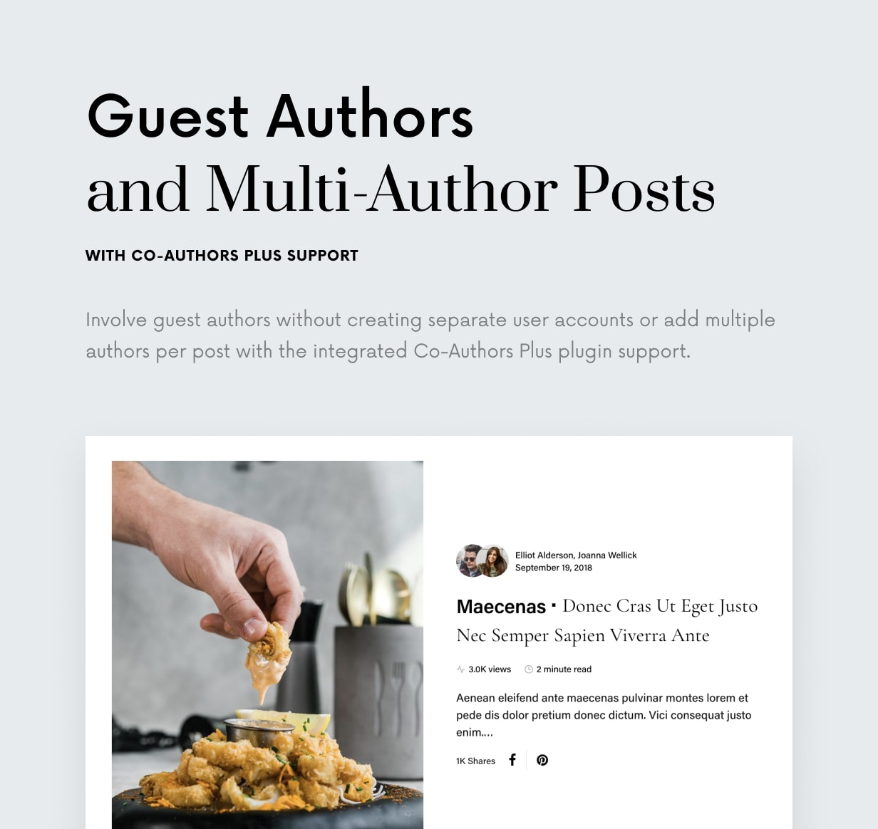 Once - Clean & Elegant WordPress Blog Theme - 26