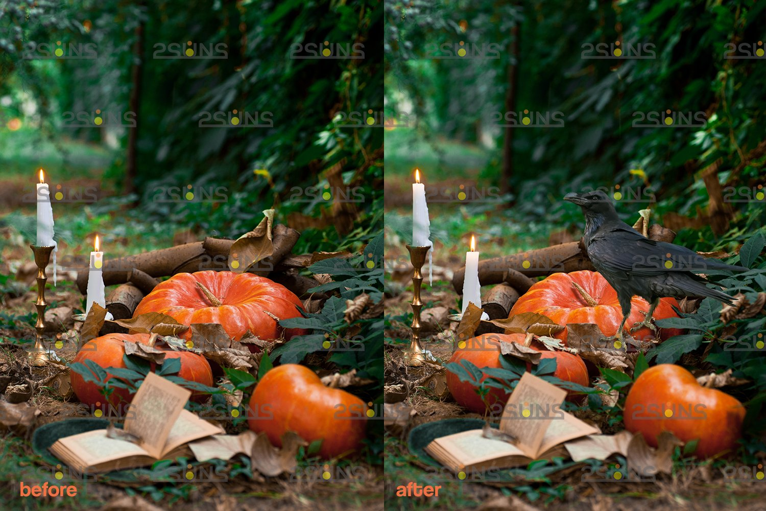 Halloween overlay Photoshop