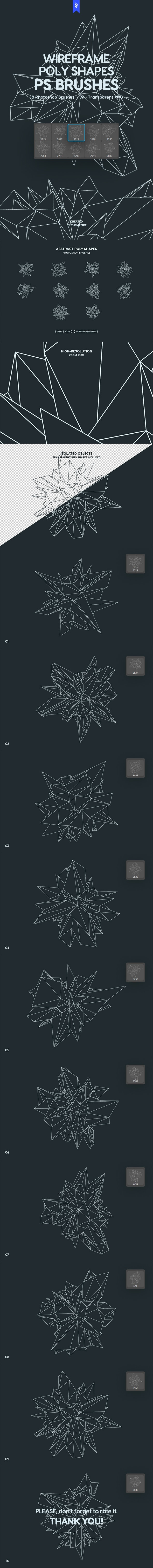 Wireframe Polygonal Shapes